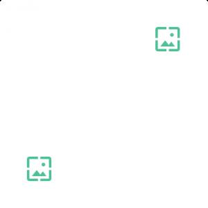 Portfolio Grids